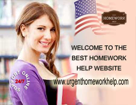 Homework help website